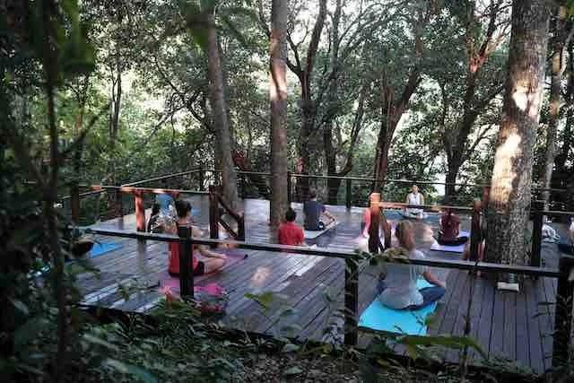 Wellness in Tropical Spice Garden Penang