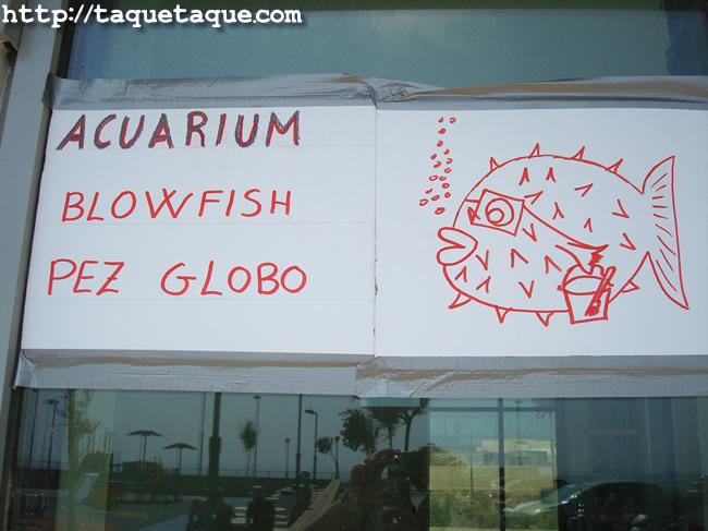 Gibraltar Aquarium - vacaciones de verano (25 de julio de 2011)