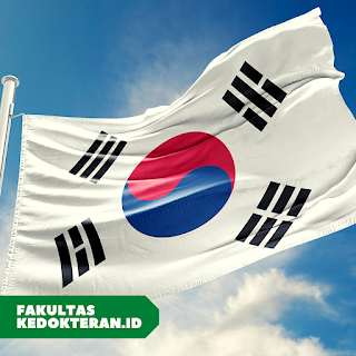 5 Fakultas Kedokteran Terbaik di Korea Selatan