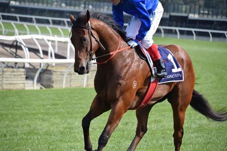 race 8 _bc lightning_osborne bulls 1