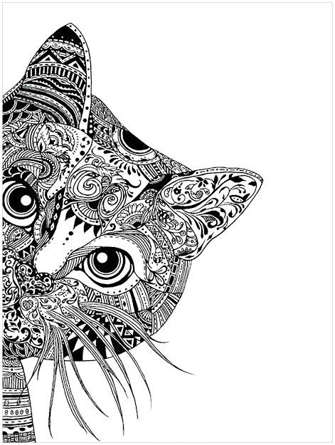 Coloringpagesadultscathead Free To Print