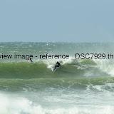 _DSC7929.thumb.jpg