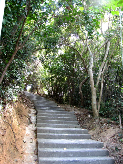 steps up the hill from the village