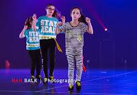 Han Balk Voorster Dansdag 2016-4943-2.jpg