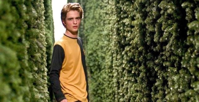 10 celebridades que você provavelmente esqueceu que apareceram em filmes de Harry Potter