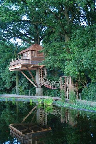 Cabane en bois perchée dans les airs