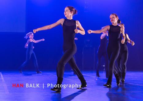 Han Balk Voorster Dansdag 2016-5310.jpg