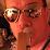 Nick Tarantola's profile photo