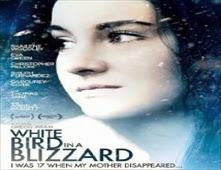 مشاهدة فيلم White Bird in a Blizzard مترجم اون لاين
