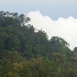 La colline de Pangi. Sukau, 13 août 2011. Photo : J.-M. Gayman