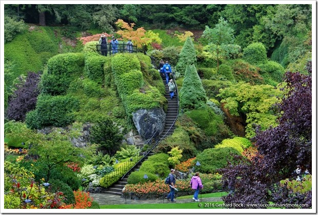 160906_Butchart_Gardens_0069