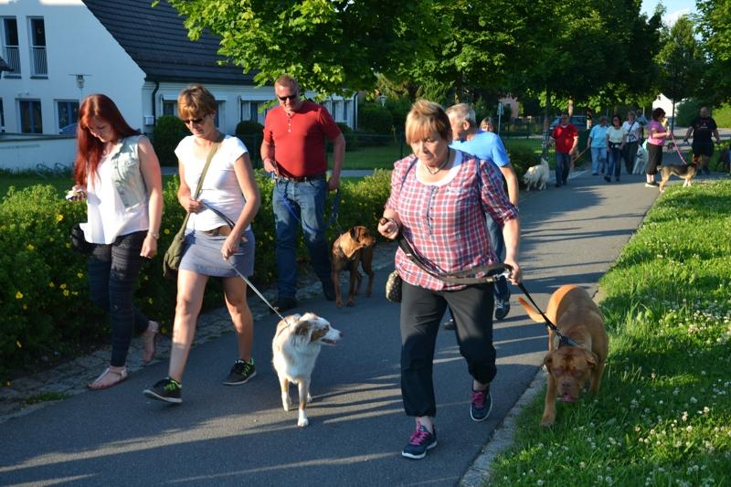 On Tour in Tirschenreuth: 30. Juni 2015 - DSC_0021.JPG