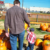 Pumpkin Patch - 114_6521.JPG