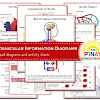Circulatory System Learning Materials