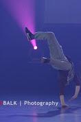 Han Balk Voorster dansdag 2015 middag-2600.jpg