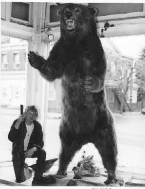 Urso pardo vs Urso polar - Página 2 Bigbear