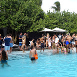 HYDE BEACH pool in Miami, the best pool party in Miami, Florida, United States
