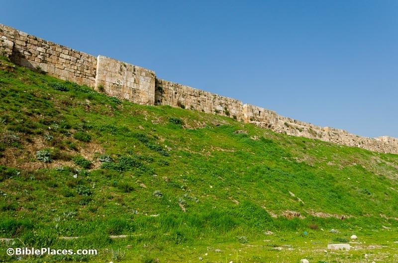 [Amman+citadel+fortification+eastern+wall%2C+tb031115005%5B6%5D]