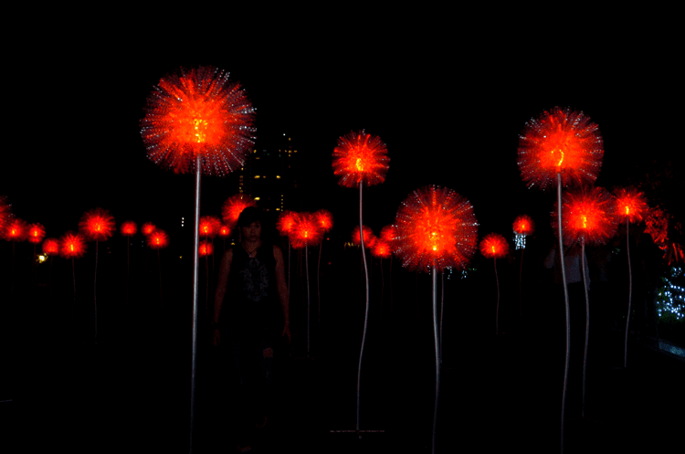 Eco-Friendly Giant Dandelions by Artist Olivia d'Aboville bloom at SM Aura This Holiday
