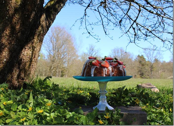 En härlig sommarbild där tårtfat med kaka står i skuggan av ett soligt träd.