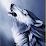 vo duoc's profile photo