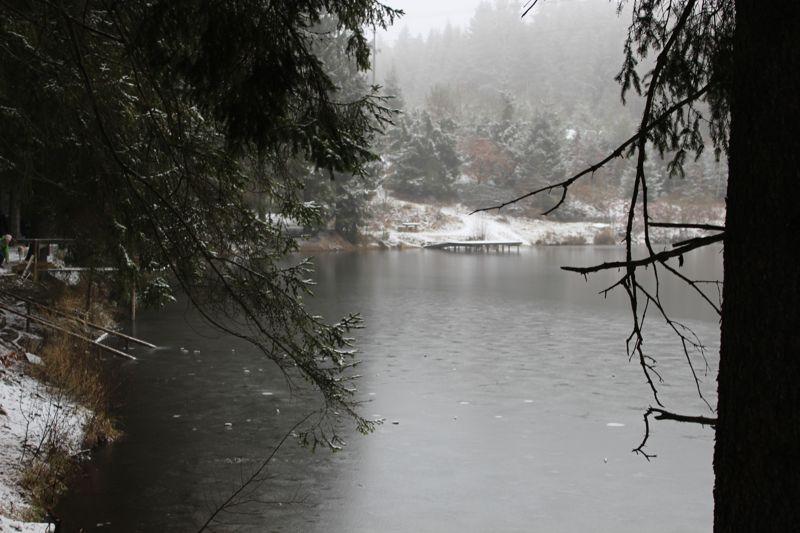 01. Januar 2016: Neujahrswanderung ins Waldnaabtal - IMG_1562.JPG