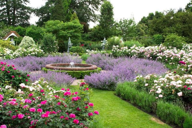 Borde Hill Garden - Rose and Mediterranean gardens
