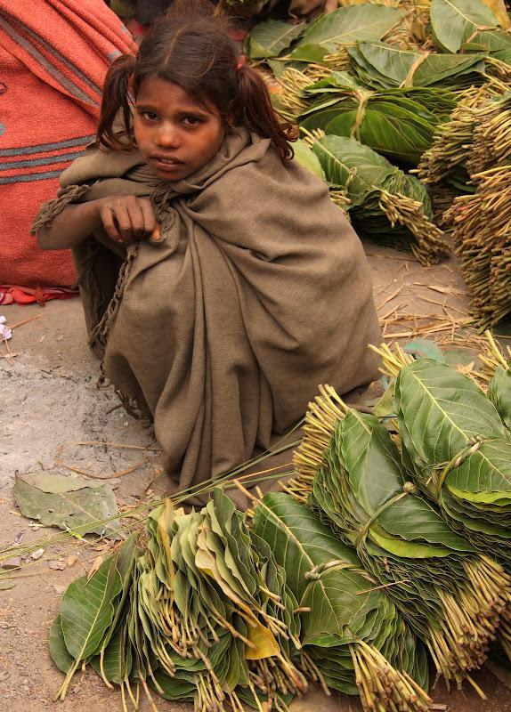#Varanasistreetscene #Varanasistreetphotography #Varanasimarkets #Uttarpradeshtourism #Varanasitourism #travelbloggersindia #Varanasitravelblog