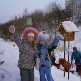 Зимой можно сделать для птиц съедобные фигурки