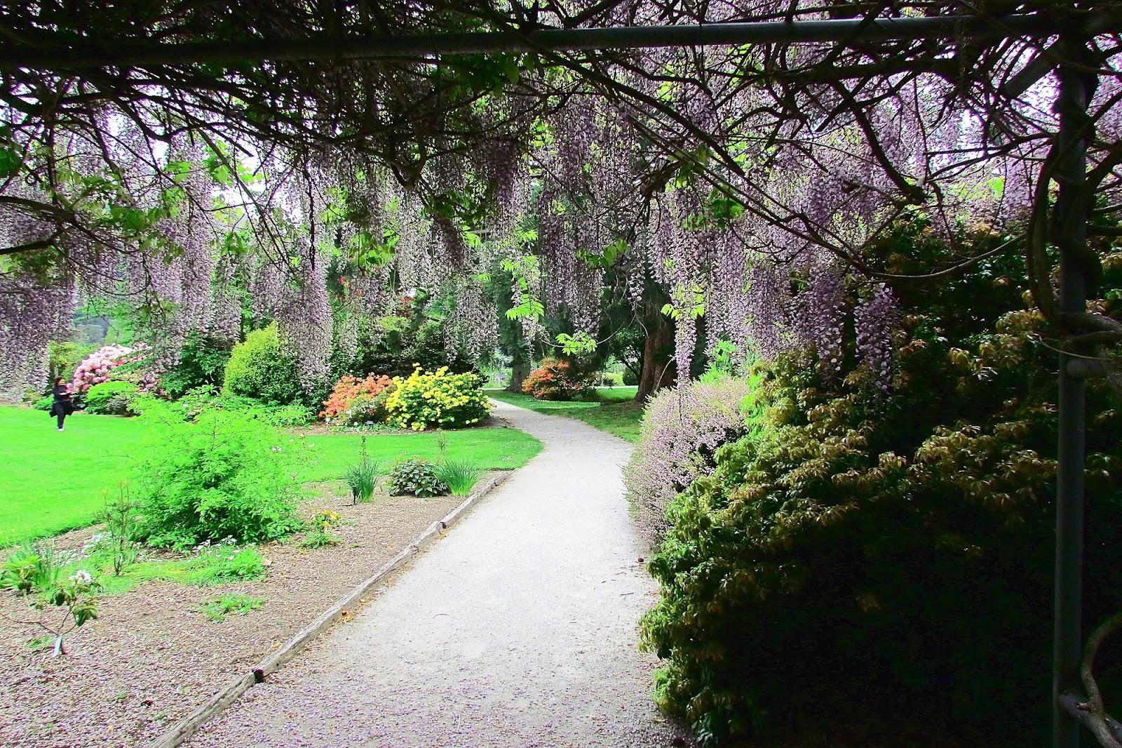 Queenstown Botanic Gardens.jpg