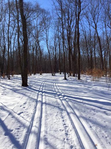 Sukkerbusk ski trail mid morning Friday