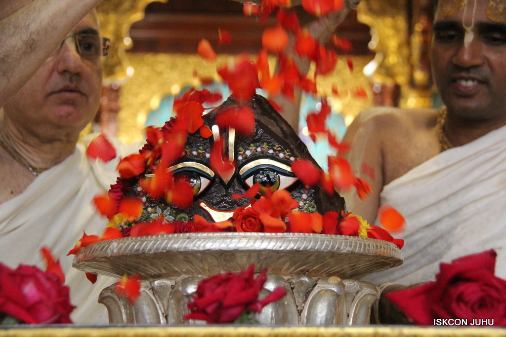 Govardhan Abhishek Darshan  At ISKCON Juhu on 31st Oct 2016 (64)