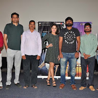 Nannu Vadili Neevu Polevule Movie Show Press Meet Pics