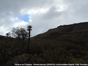 Páramo de Chingaza - Monterredondo (25/09/16) (cc)Humedales Bogotá; Patty Gonzalez