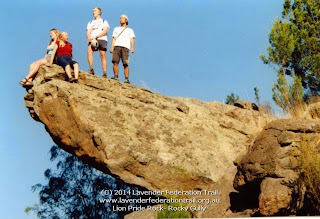 Lion Pride Rock- Rocky Gully