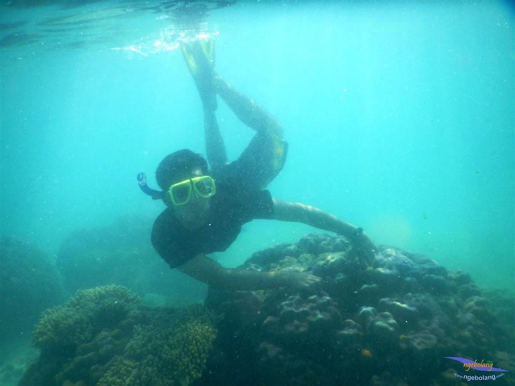 pulau pari, 23-24 mei 2015 22