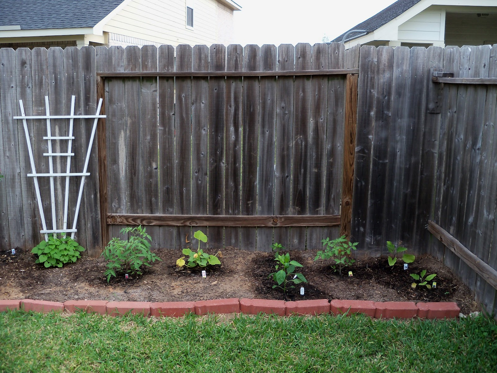 Gardening 2011 - 100_7128.JPG