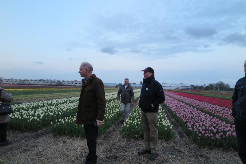 Weekend Noord Holland 2016 - IMG_6488_800x534.JPG