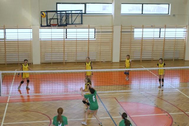 Zawody siatkarskie dziewczat 1 marca 2011 - DSC09353_1.JPG