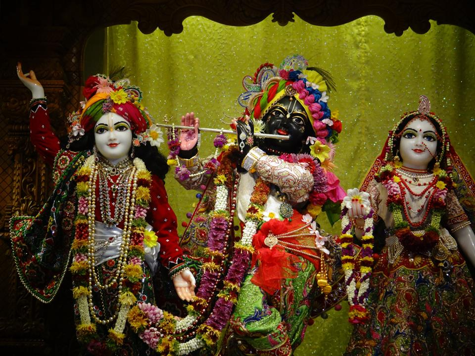 ISKCON GEV Deity Darshan 20 Jan 2017 (11)