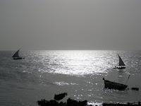 Dhow boats at sunset - Stone Town, Zanzibar