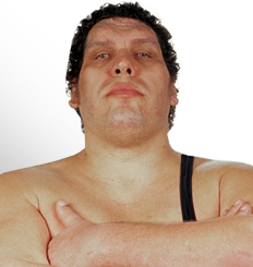 Permalink to Andre the Giant Dp Profile Pics