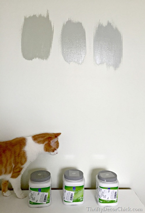 picking out a gray green paint color