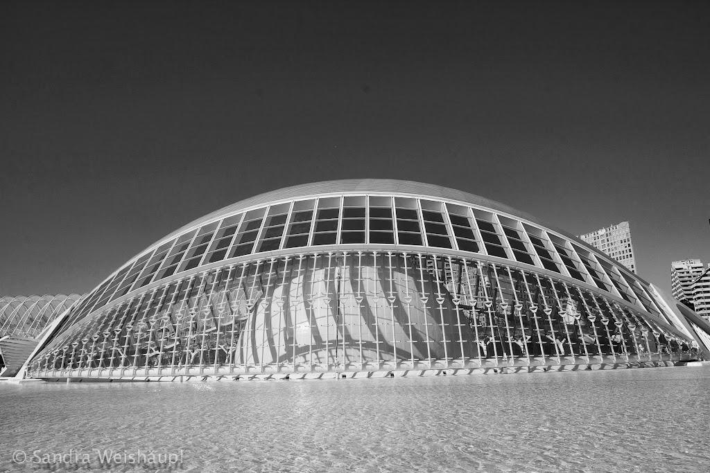 Ciudad de las Artes y de las Ciencias - Valencia