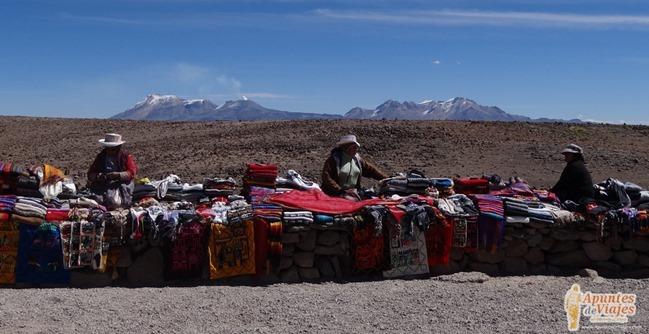 Vicuñas Volcanes Arequipa Chivay Perú 29
