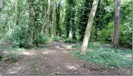 2 woodland walk