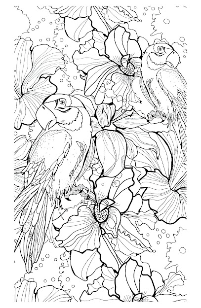 Free Coloring Page Coloringadultdifficultparrots
