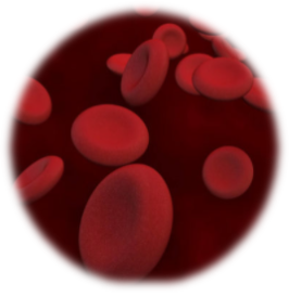 hyporesponsiveness to erythropoietin causes and management what causes increase in erythropoietin high erythropoietin causes Epo hyporesponsiveness