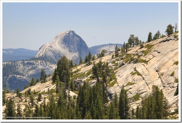 160630_Yosemite_098