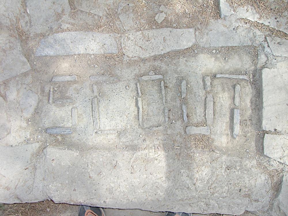 Griebal 2006 - CIMG6718.JPG